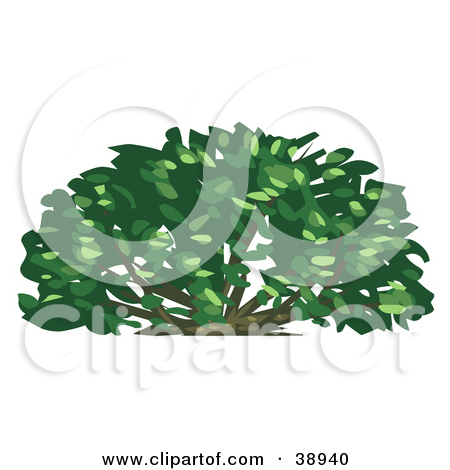 Clipart Illustration of a Lush Green Shrub by Tonis Pan #38940.