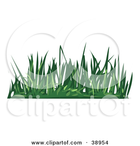 Tufts of green bush clipart #20
