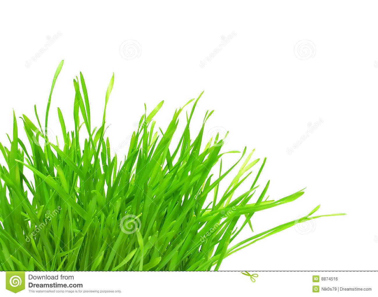 Green Grass Tuft Stock Photos, Images, & Pictures.