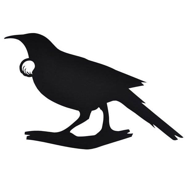 Image result for tui vector.