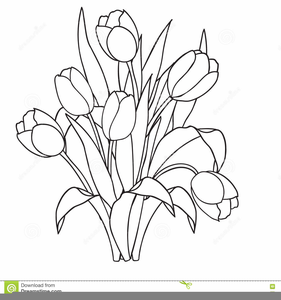 Tulips Clipart Black And White.