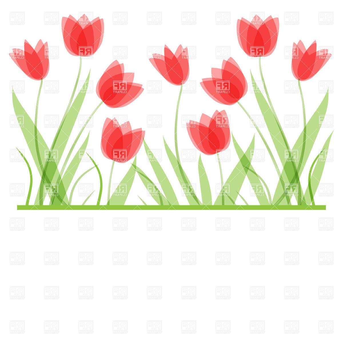 HD Tulip Border Clip Art Drawing » Free Vector Art, Images.