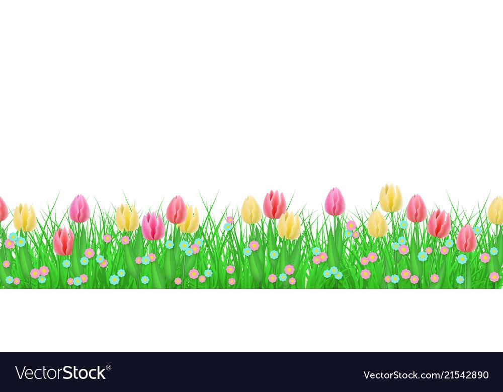 Green grass tulip flowers border frame.