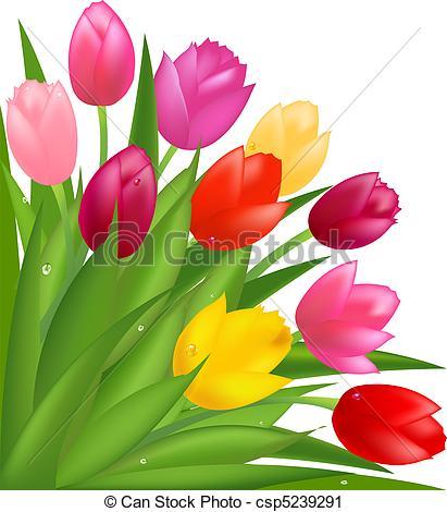 Tulip Bouquet Clipart.