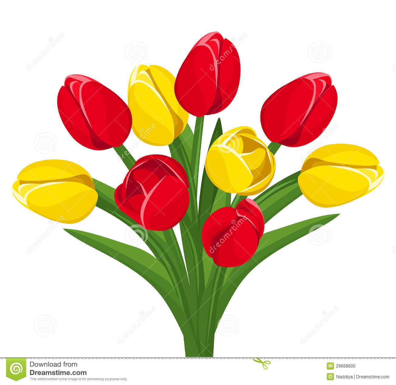 Bouquet Of Red And Yellow Tulips. Vector. Stock Photo.