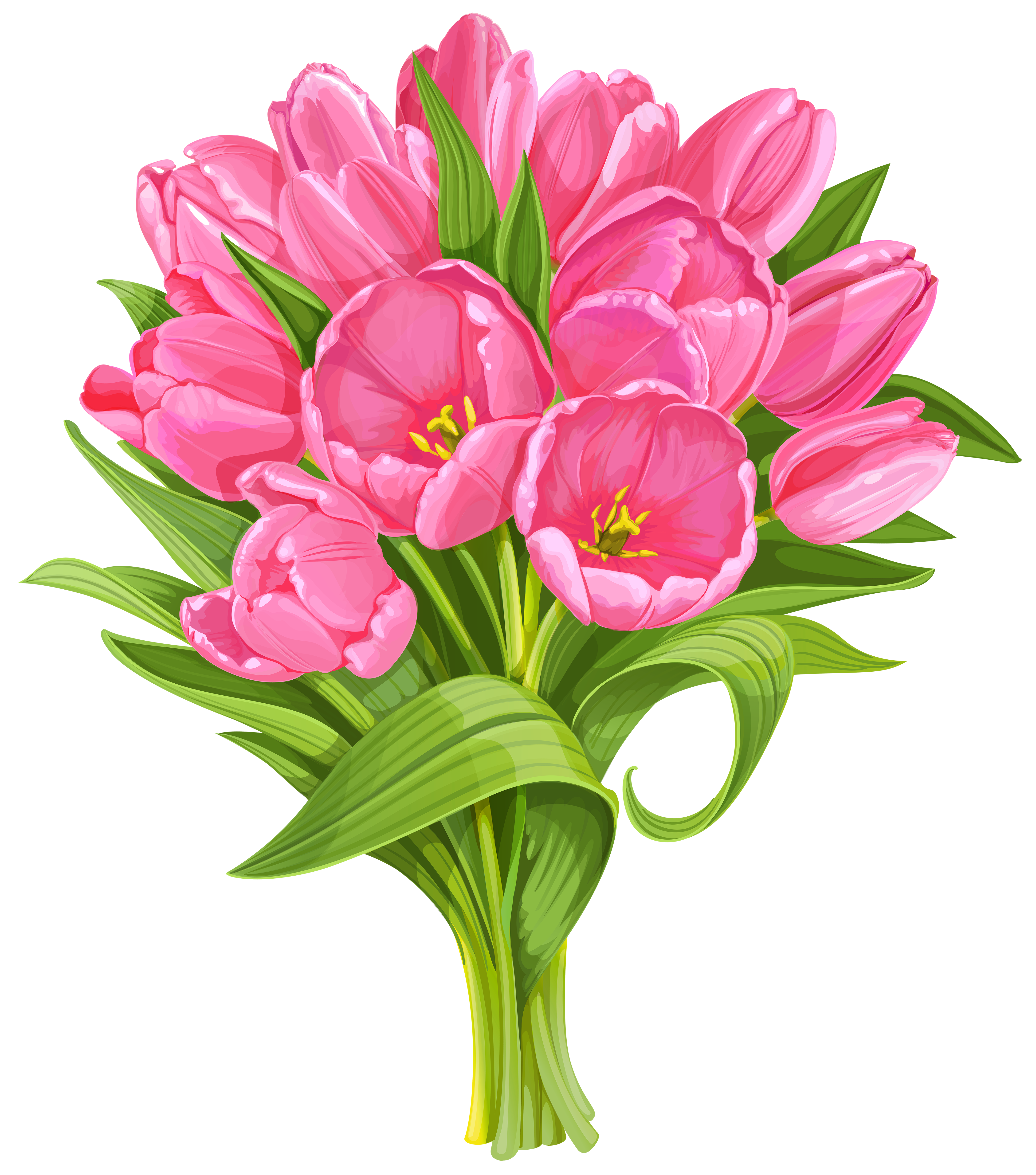 Tulips Bouquet Transparent PNG Clip Art.