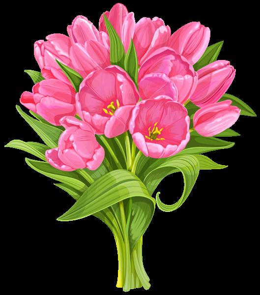 Tulips Bouquet Transparent PNG Clip Art.