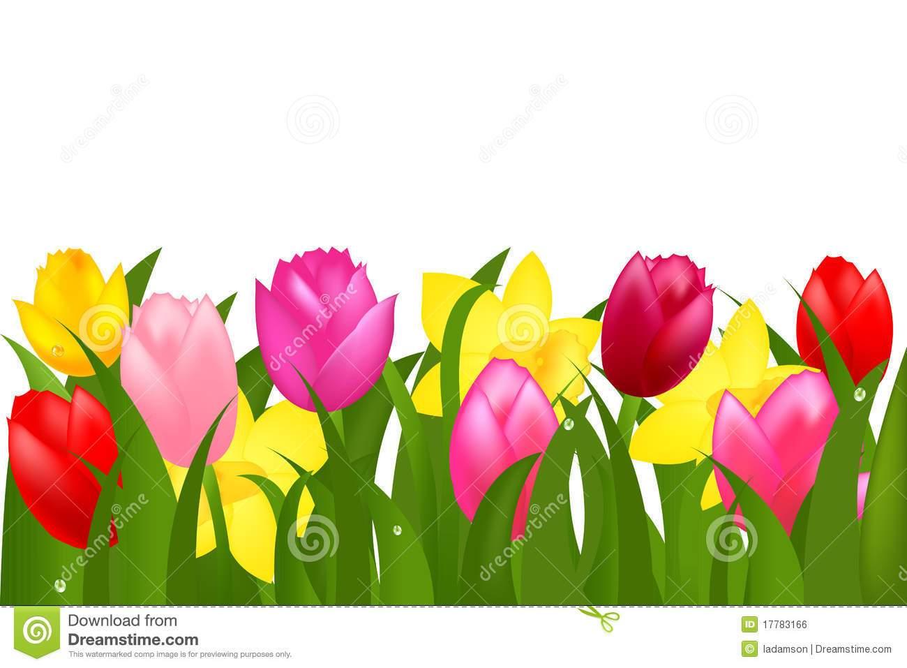 Tulip border clipart 3 » Clipart Portal.