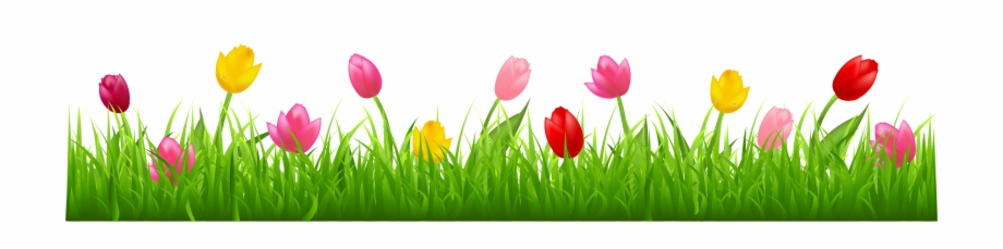 Easter Backdrop Png.