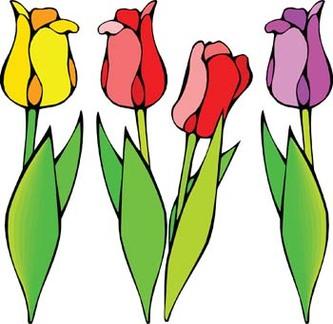 Clipart tulip.