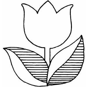 Coloring Book Flowers Outline.