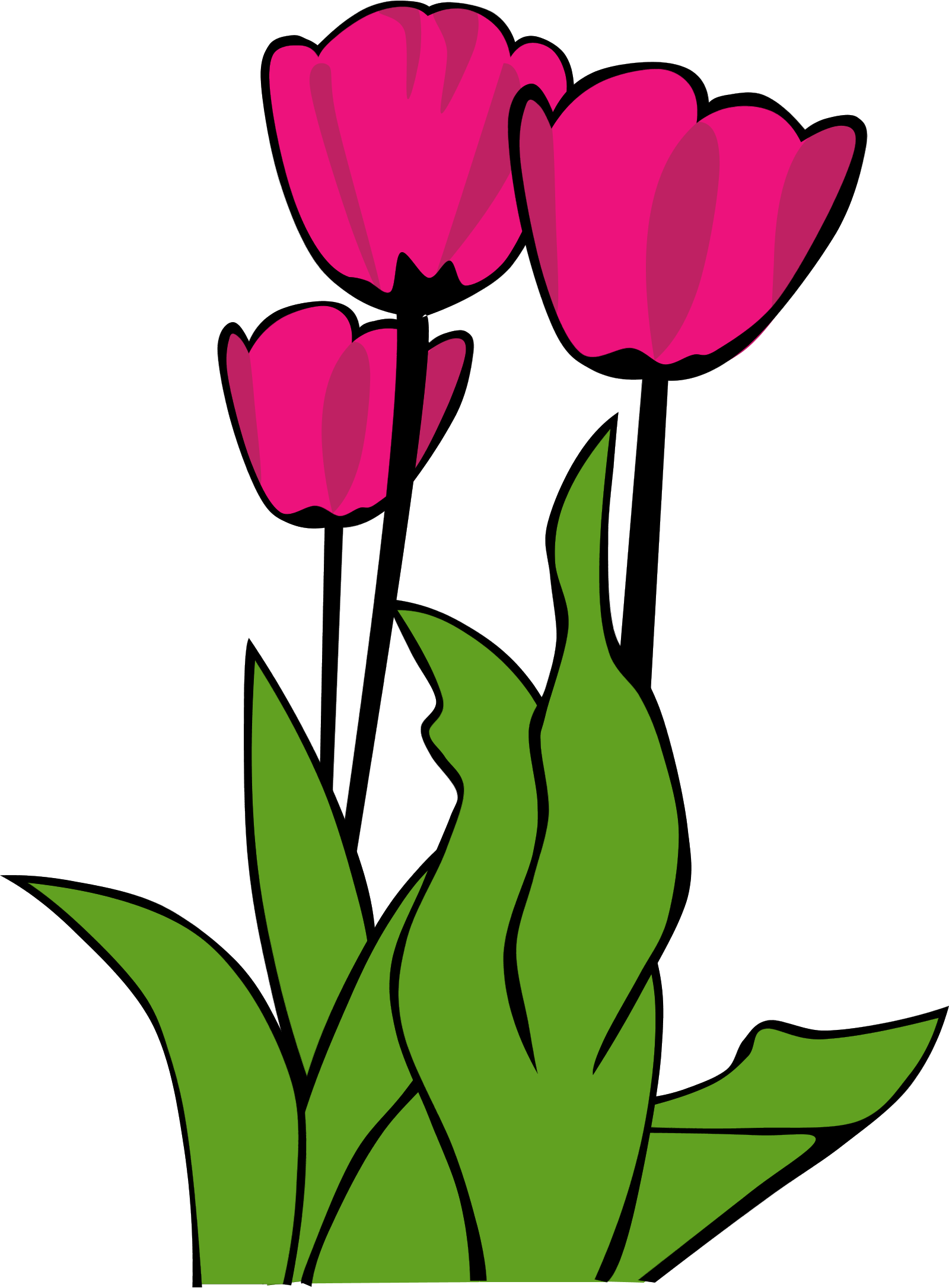 Clipart tulips flowers.