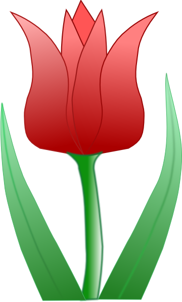 Tropical Tulip Flower Clipart.