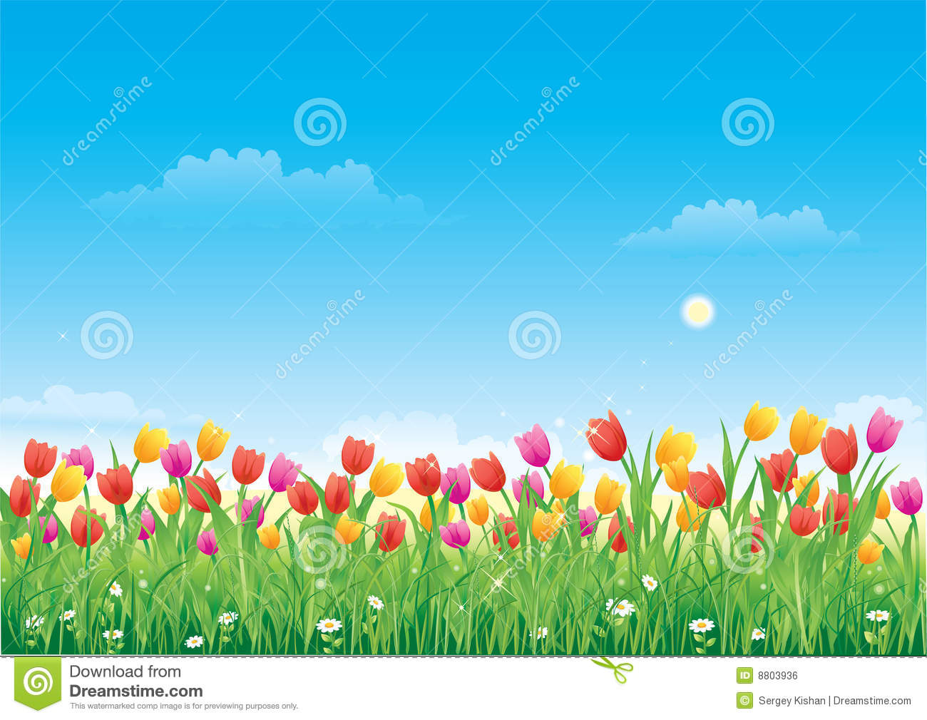 Floral Meadow. Tulips Royalty Free Stock Image.