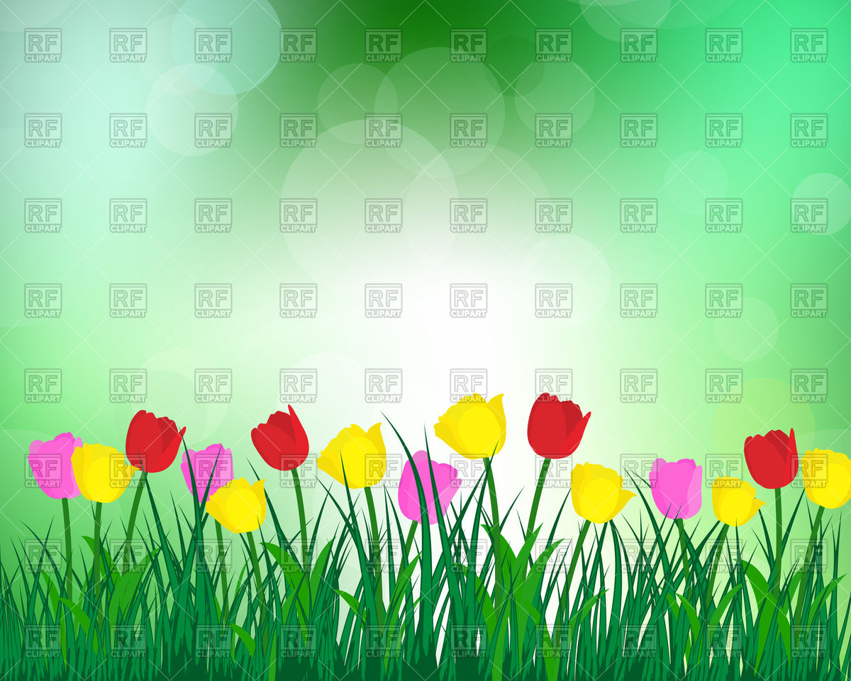 Summer meadow background with tulips Vector Image #107204.