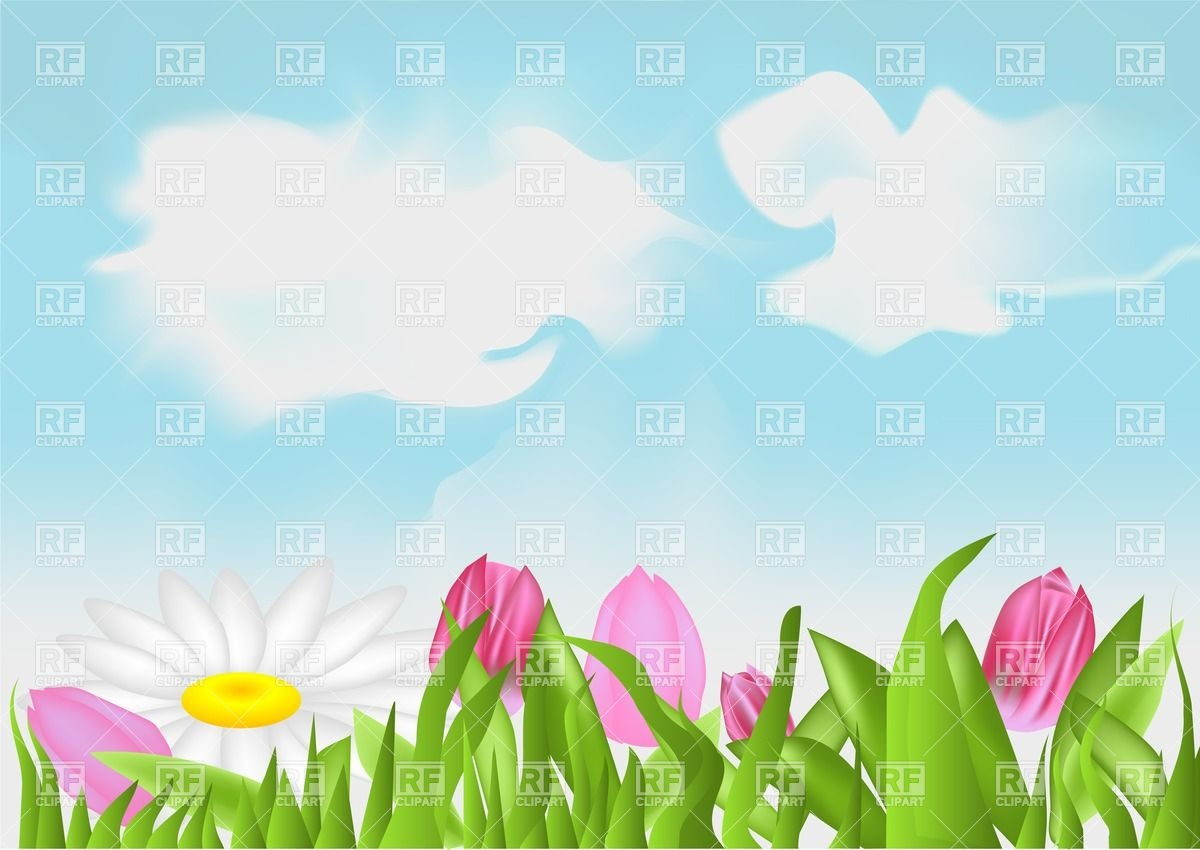 Meadow with tulips and camomiles Vector Image #25586.