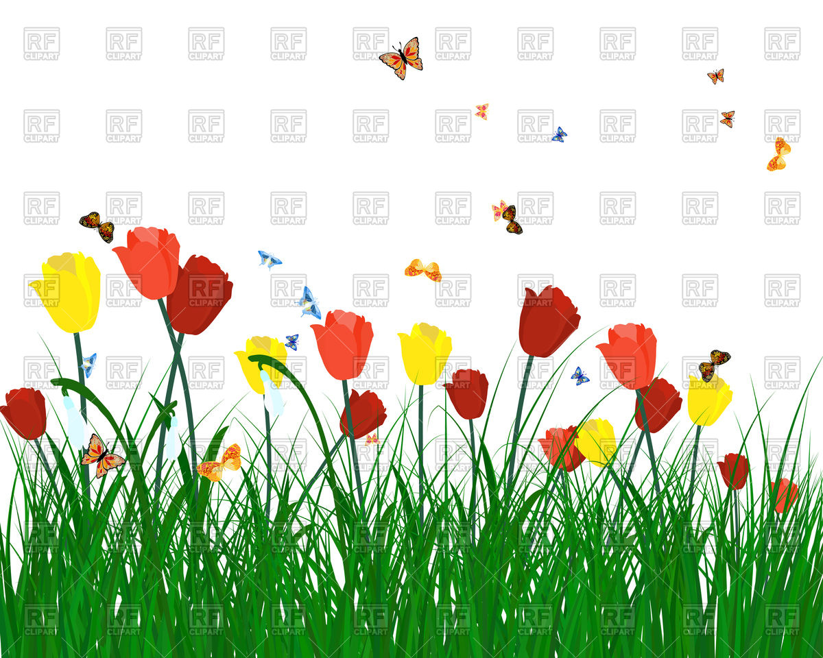 Meadow background with butterflies and tulips Vector Image #107474.
