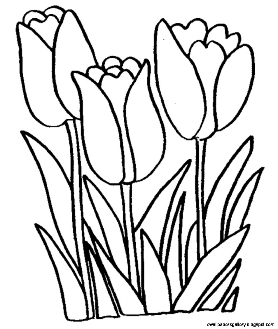 Tulip Clipart Free Black And White.