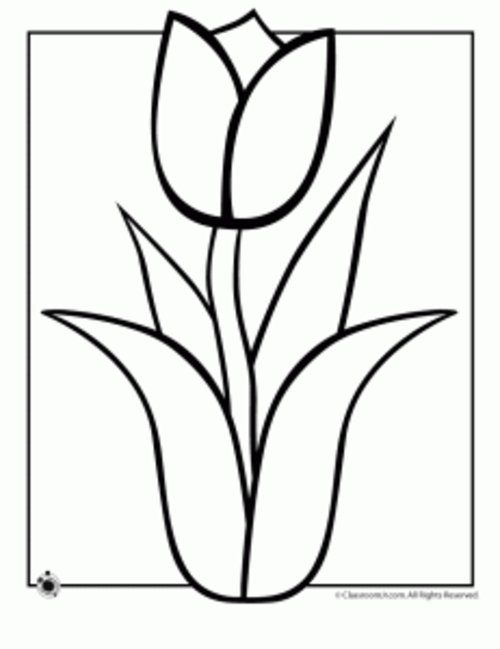 Free Tulip Black And White Clipart, Download Free Clip Art.