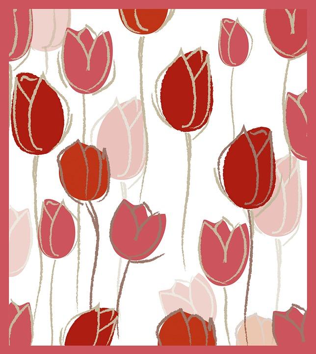 Free illustration: Pink, Tulips, Tulpenbluete, Plant.