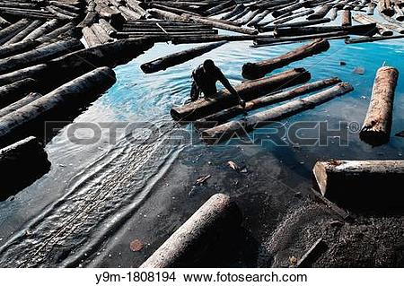 Stock Photo of A Colombian sawmill worker push the logs, floating.