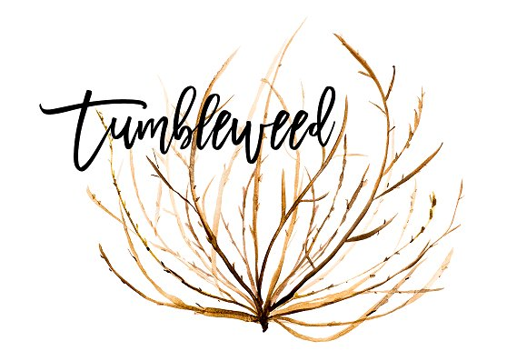 Tumbleweed Clipart (101+ images in Collection) Page 2.