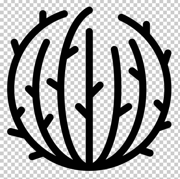 Computer Icons Tumbleweed Cactaceae PNG, Clipart, Black And.