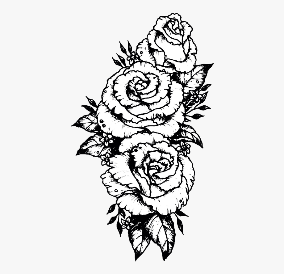 tumblr #sticker #stickers #flower #flowers #rose #roses.