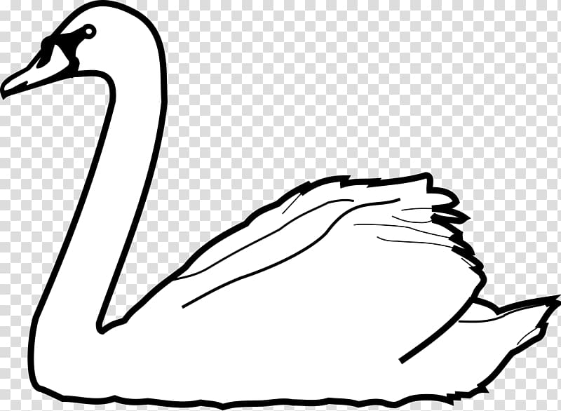 Goose Tundra Swan , swan transparent background PNG clipart.