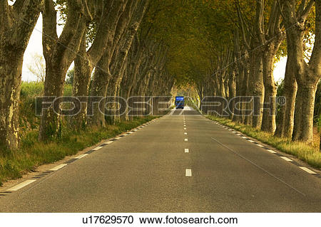 Stock Photography of Truck on Road Going Through Tunnel of Trees.