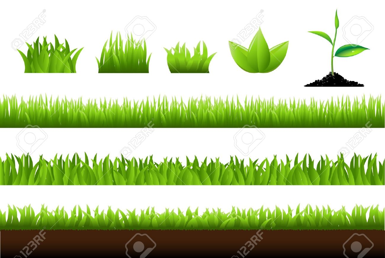 Grass Set, Isolated On White Background Royalty Free Cliparts.