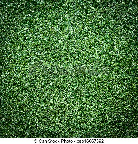 Stock Photographs of Turf Grass Texture and surface csp16667392.