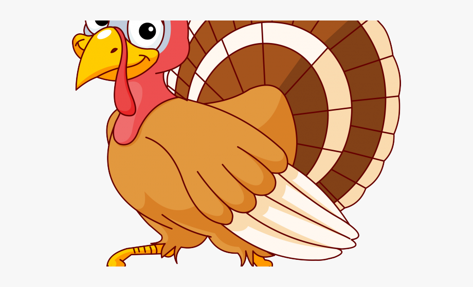 Turkey Bird Clipart Baby.