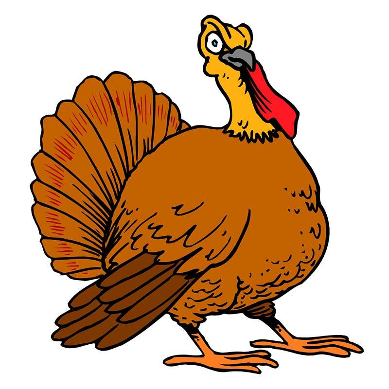 15+ Turkey Body Clipart.