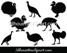 Turkey Hen.