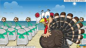A Happy Turkey and Chairs And A Canopy Set Up For A Beach Wedding Background.