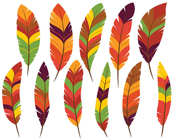 Turkey feathers clipart 1 » Clipart Station.