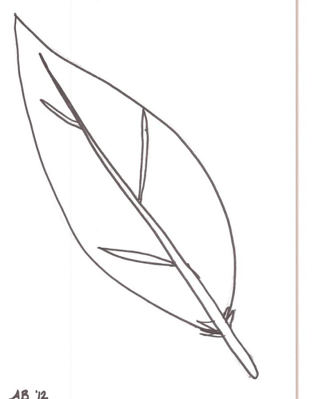 Thanksgiving Turkey Feathers Coloring Pages.