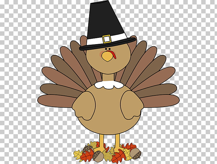 Turkey meat Thanksgiving Day Thanksgiving turkeys.