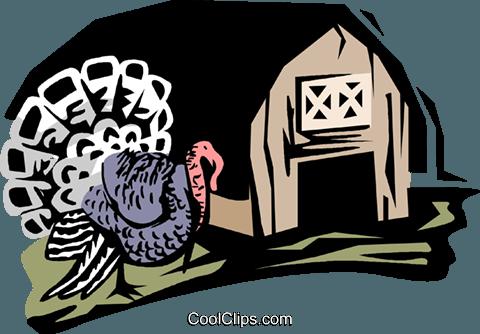turkey farm Royalty Free Vector Clip Art illustration.