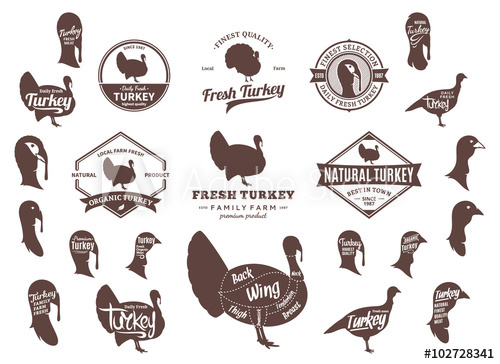 Vector Turkey Logo, Icons, Charts and Design Elements.