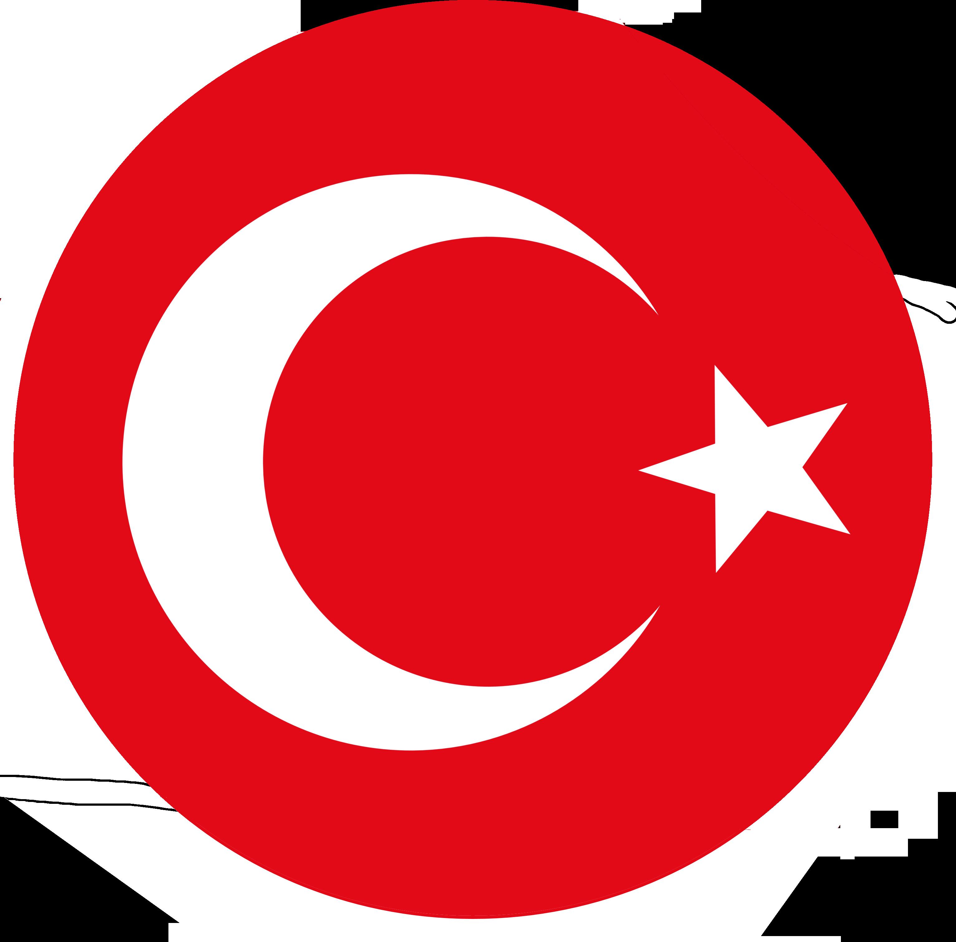 Turkey national football team.
