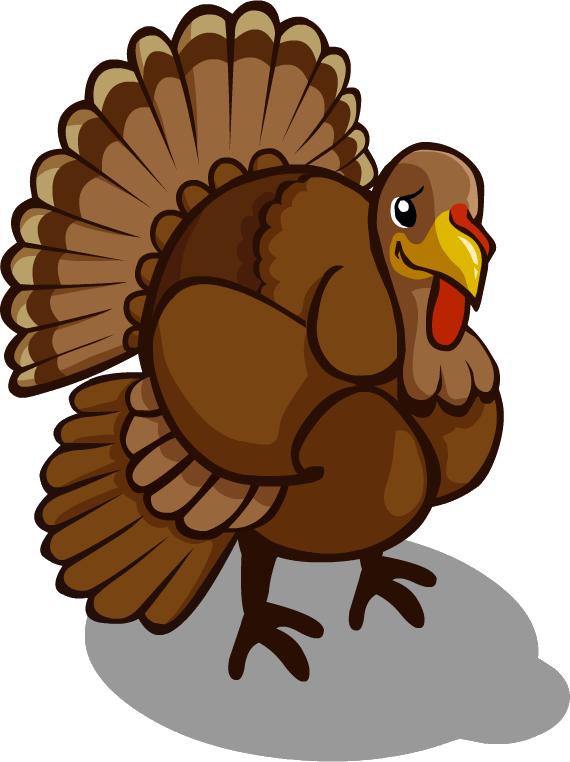 Turkey Bird PNG Transparent Images.