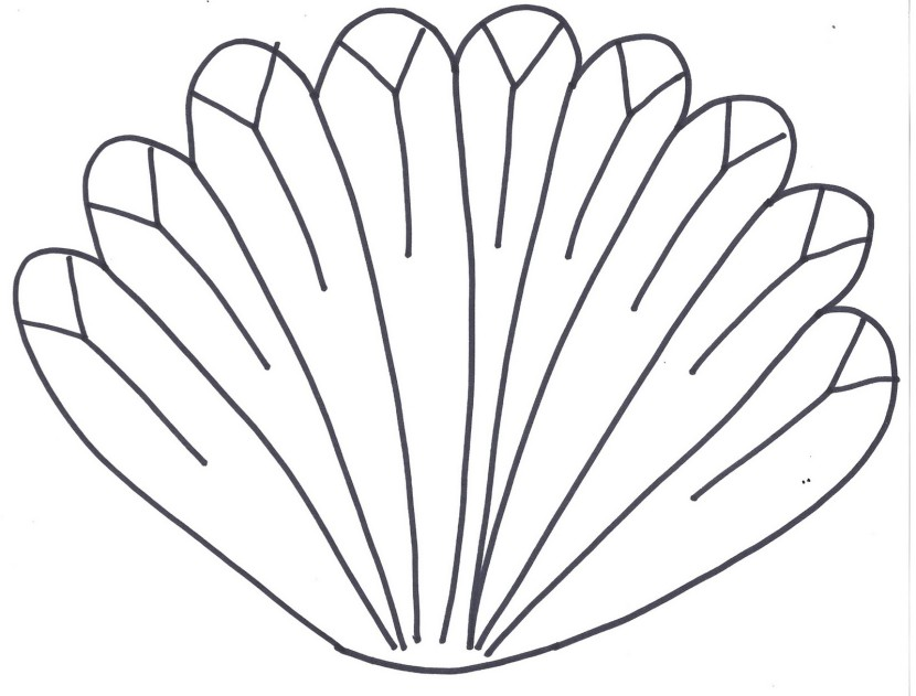 Turkey Feather Clipart.