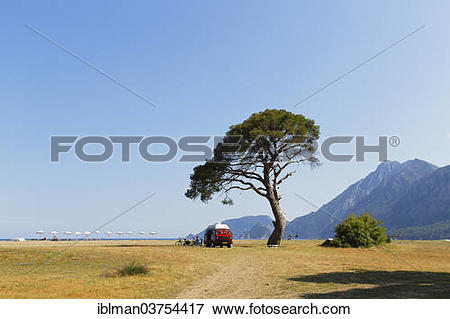 Picture of Beach of Olympos, VW van under a pine tree, Cirali.