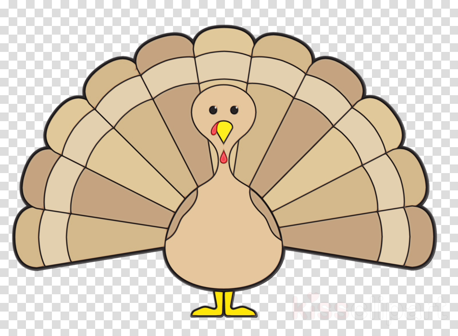 cartoon beak bird turkey wing clipart.