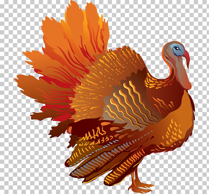Turkey Freedom from Want , Colorful Turkey s PNG clipart.