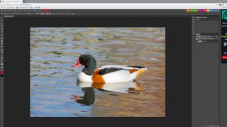 How to edit photos online with Photopea.