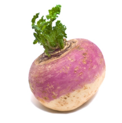 Turnips PNG.