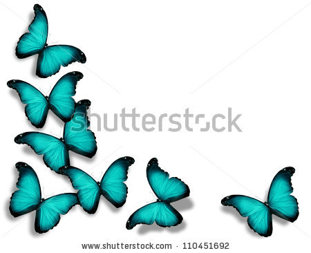 Turquoise monarch butterfly clipart.